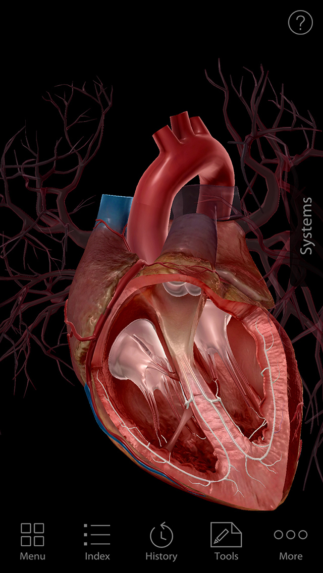 Human Anatomy Atlas ios