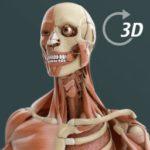 Visual Anatomy ios